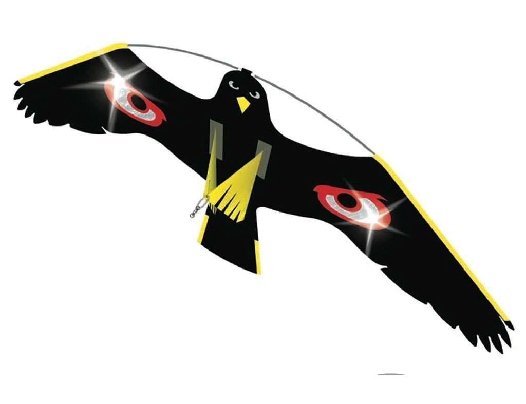 037-2 terrorhawk-v