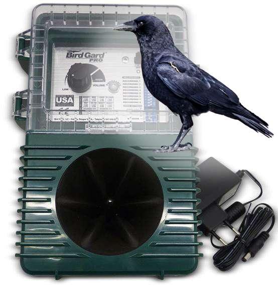 Gard Pro crow