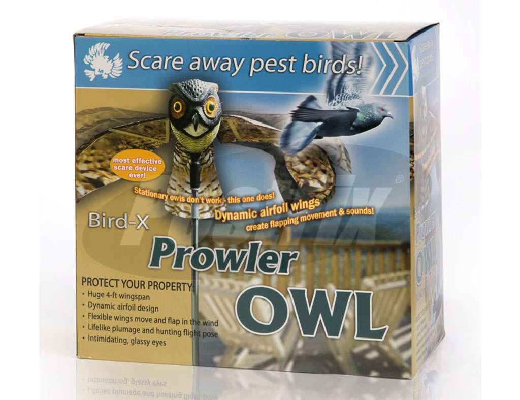 Prowler Owl-2