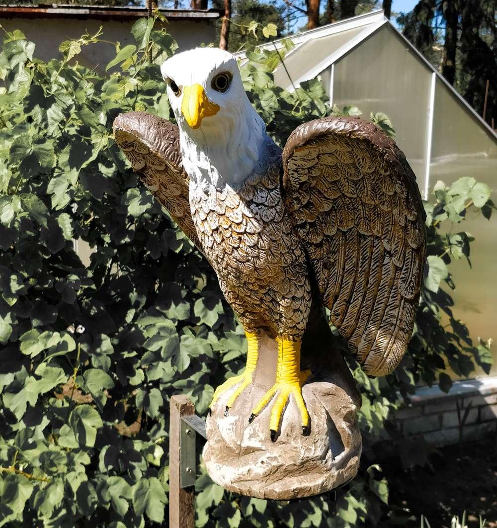 birds scarer eagle-3
