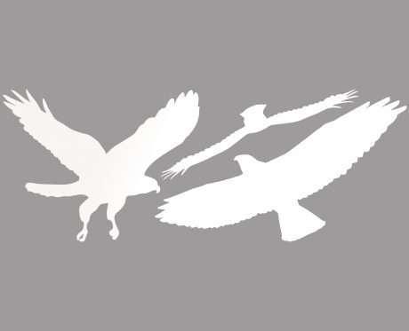 bird barrier